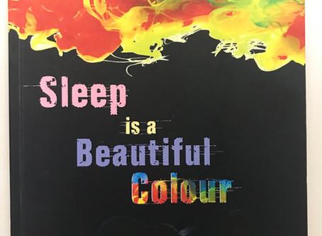 Sleep Is A Beautiful Colour in Tino Prinzi's Top Ten Funny Flash