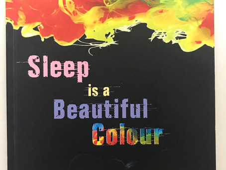 Sleep Is A Beautiful Colour in Tino Prinzi's Top Ten Funny Flash