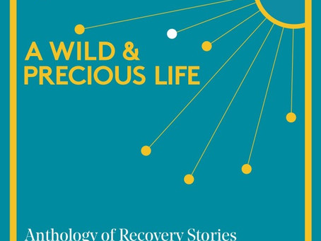 A Wild And Precious Life - Recovery Anthology