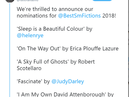 Best Small Fictions Nomination