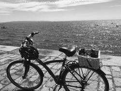 Bike Guensey 1