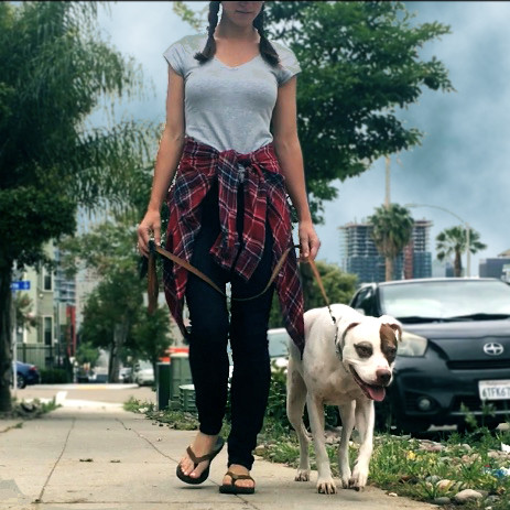 dog trainer girl holding leash on a structured walk with pit bull