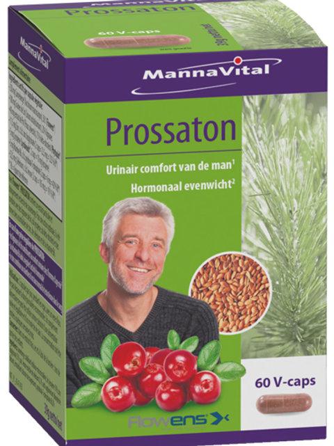Prossaton