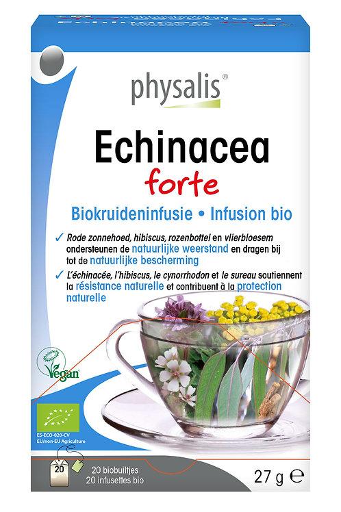 Echinacea Infusie