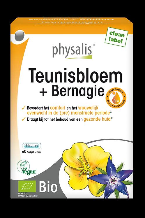 Teunisbloem-Bernagie
