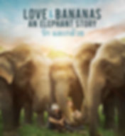 love-bananas-poster-compressed.jpg
