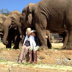 Patty-and-Elephants.jpg