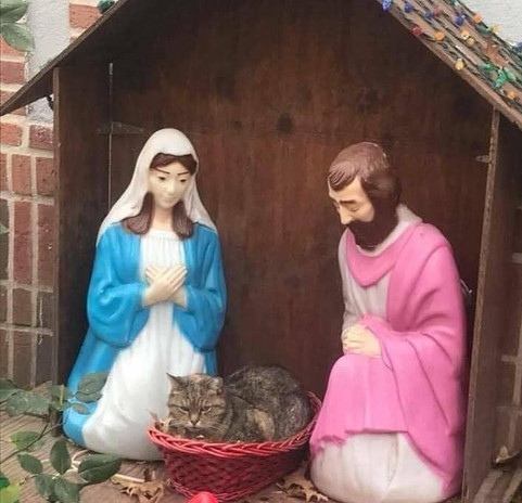 The Warburtons: Outdoor Nativity with unexpected surprise