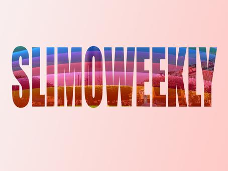 SlimoWeekly Update: A Mid-Year Recap