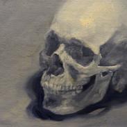 Skull 7.JPG