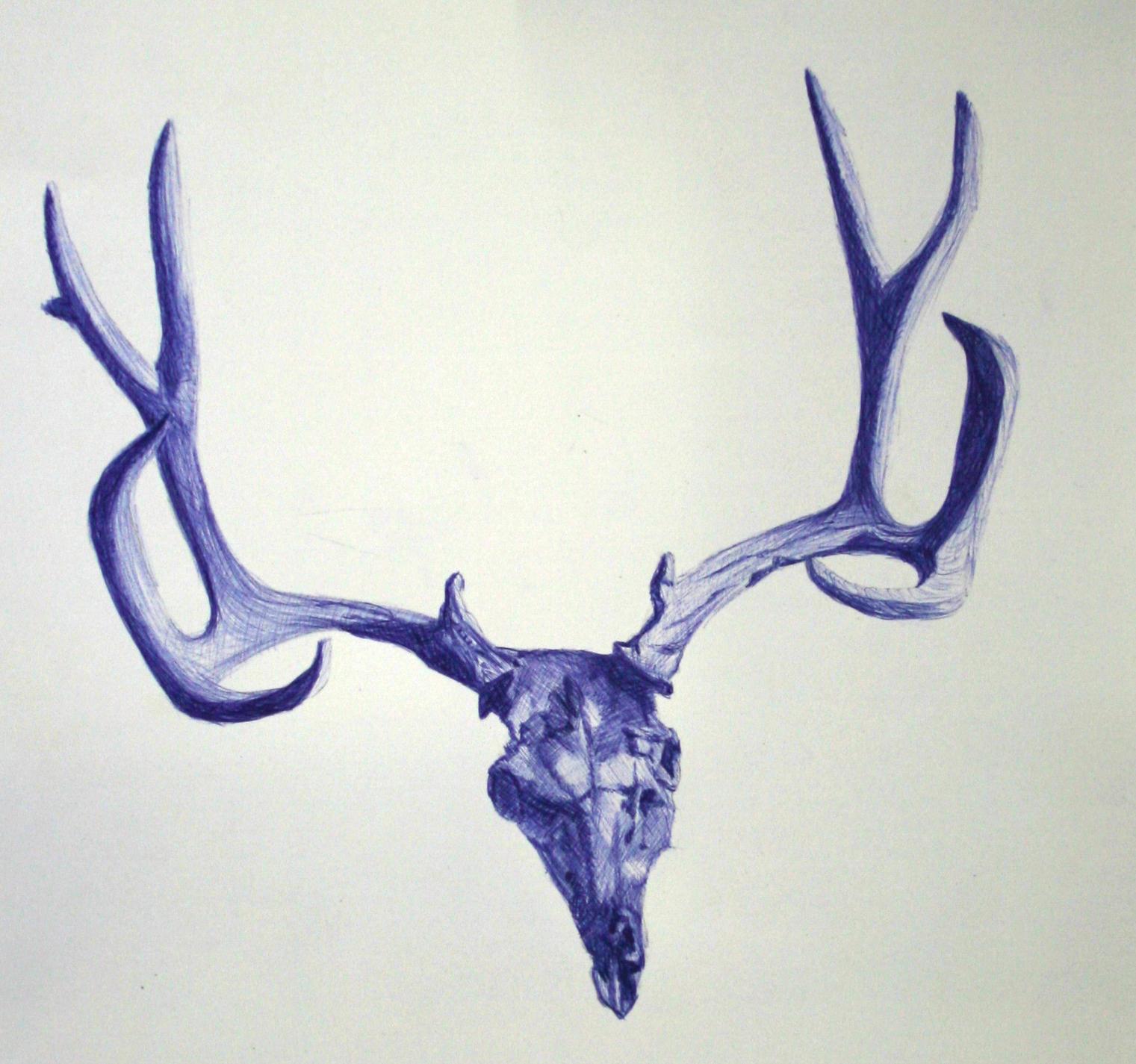 """""""Deer Skull"""""""
