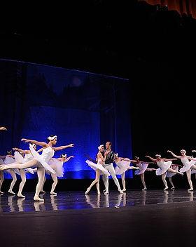 Ballet-Petit-2016-Swan-Lake_0004.jpg