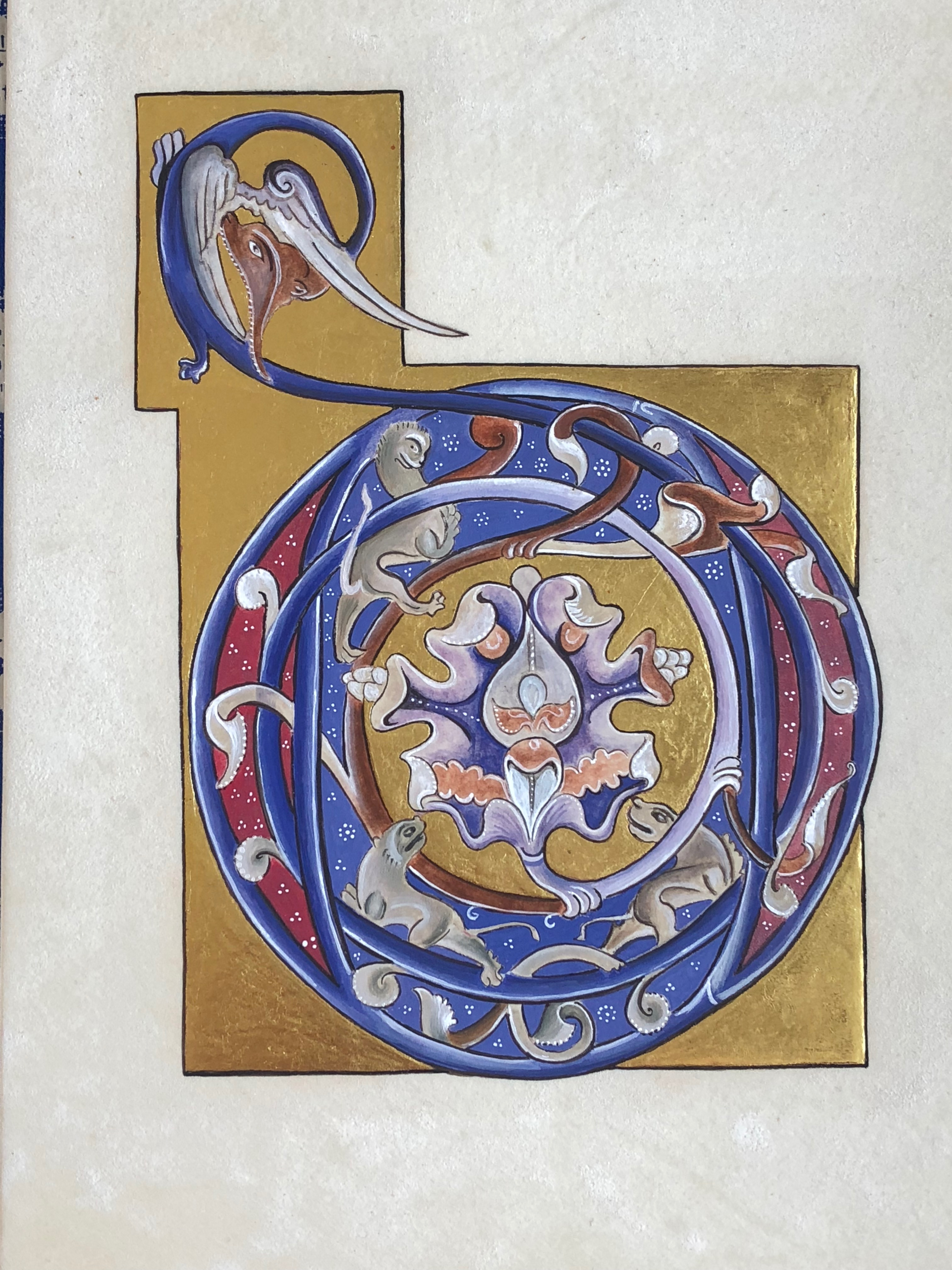 illuminated initial on velum