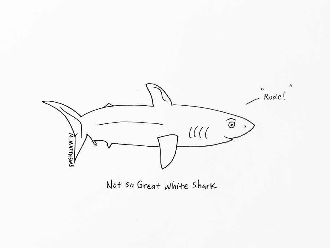 Not so Great White Shark