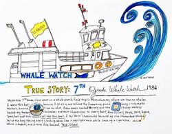 True Story: Whale Watch