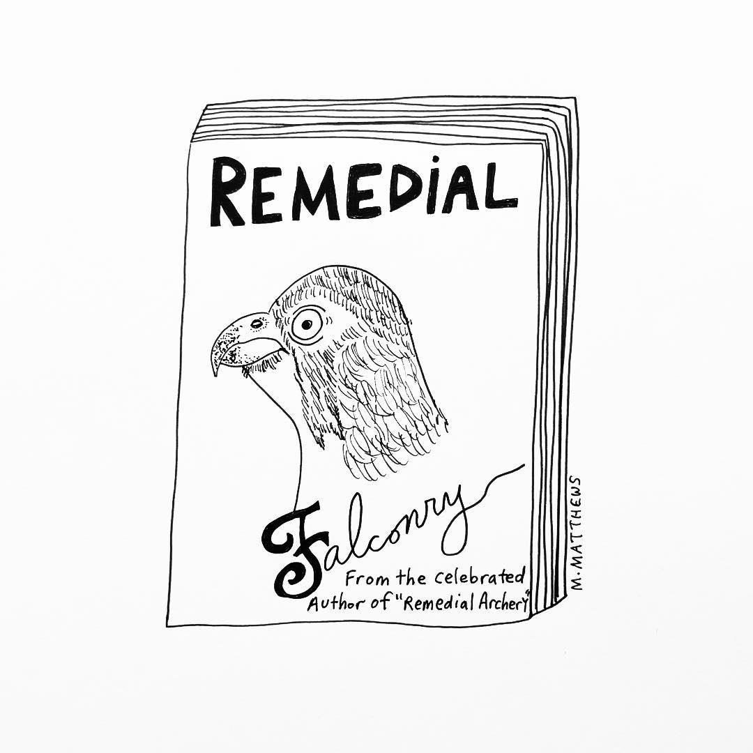 Remedial Falconry