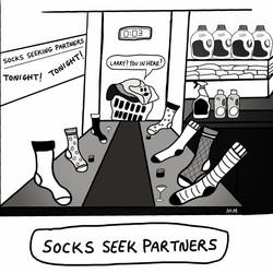 Socks Seek Partners