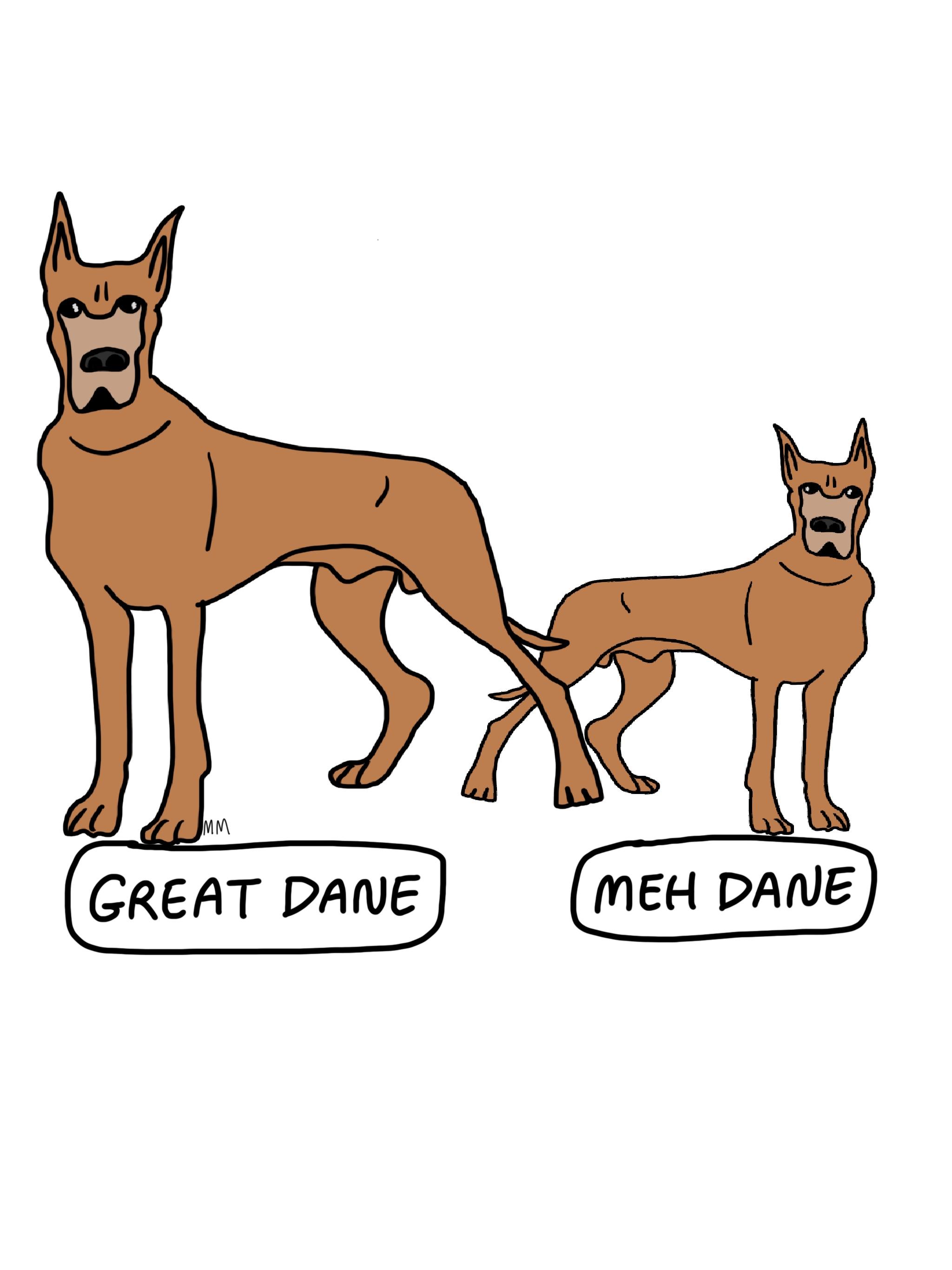 Meh Dane