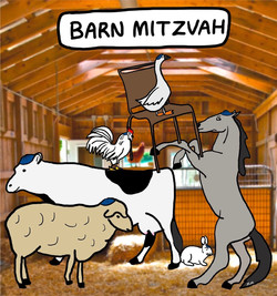 Barn Mitzvah