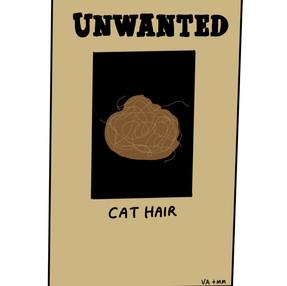 Unwanted: Cat Hair