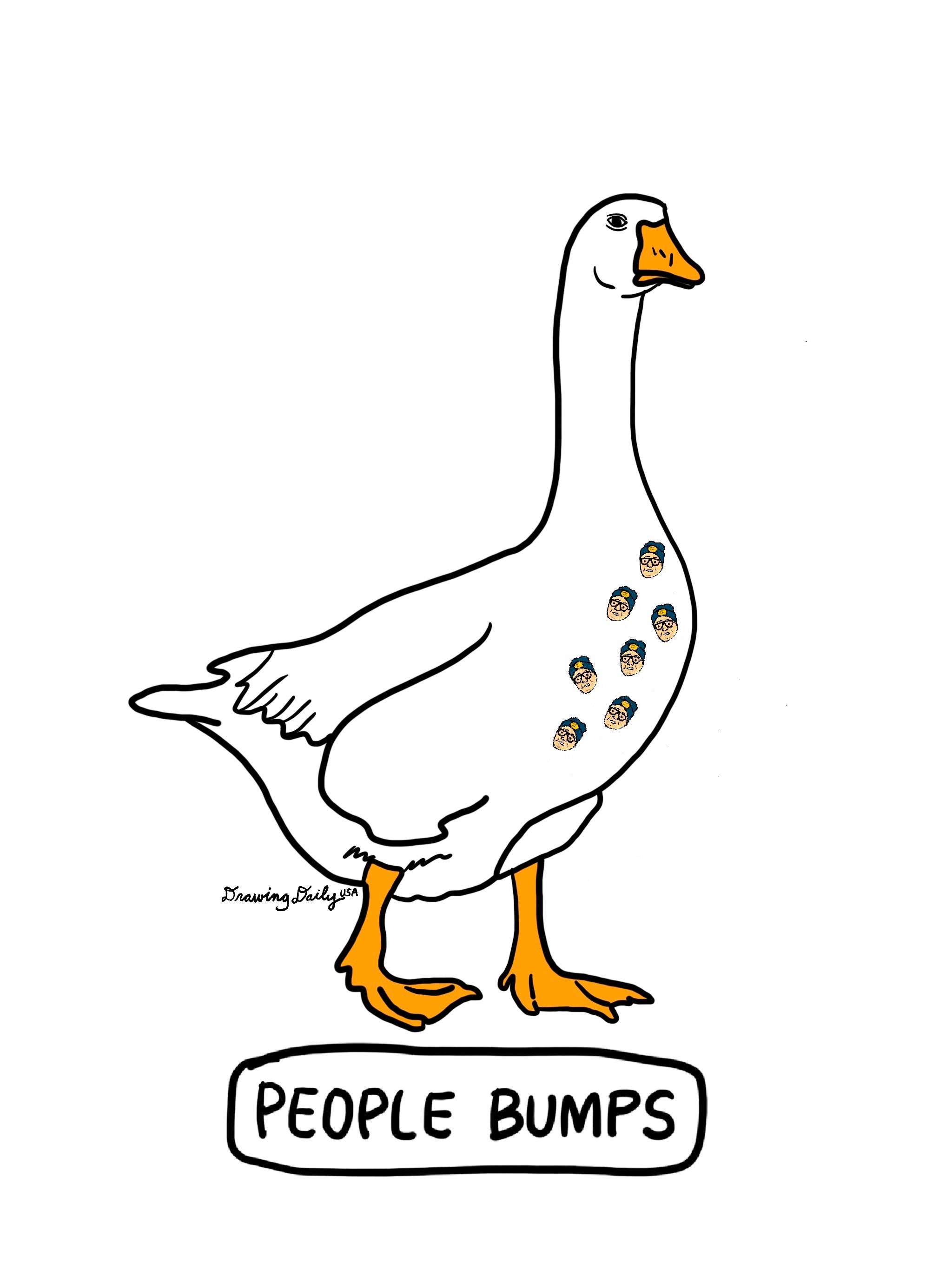Do Geese Get People Bumps?