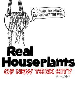 Real Houseplants of New York City