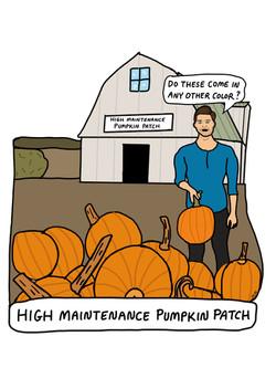 High Maintenance Pumpkin Patch