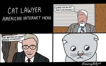 Cat Lawyer