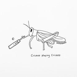 Cricket Plays Cricket