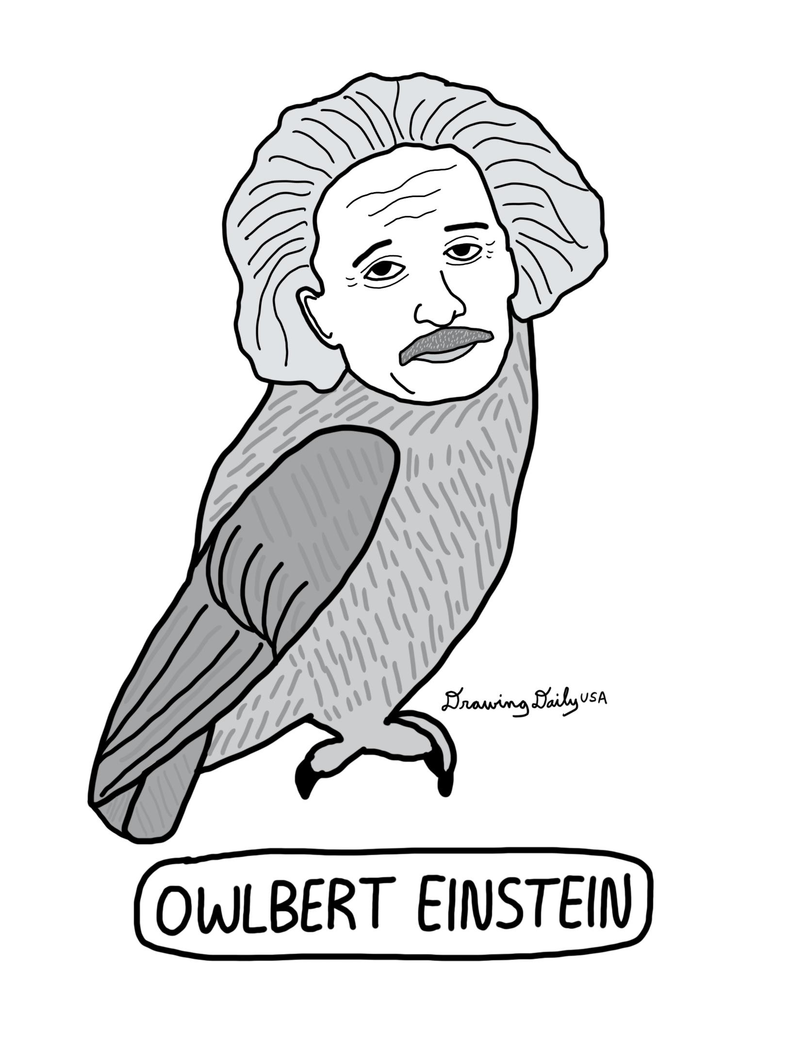 Owlbert Einstein