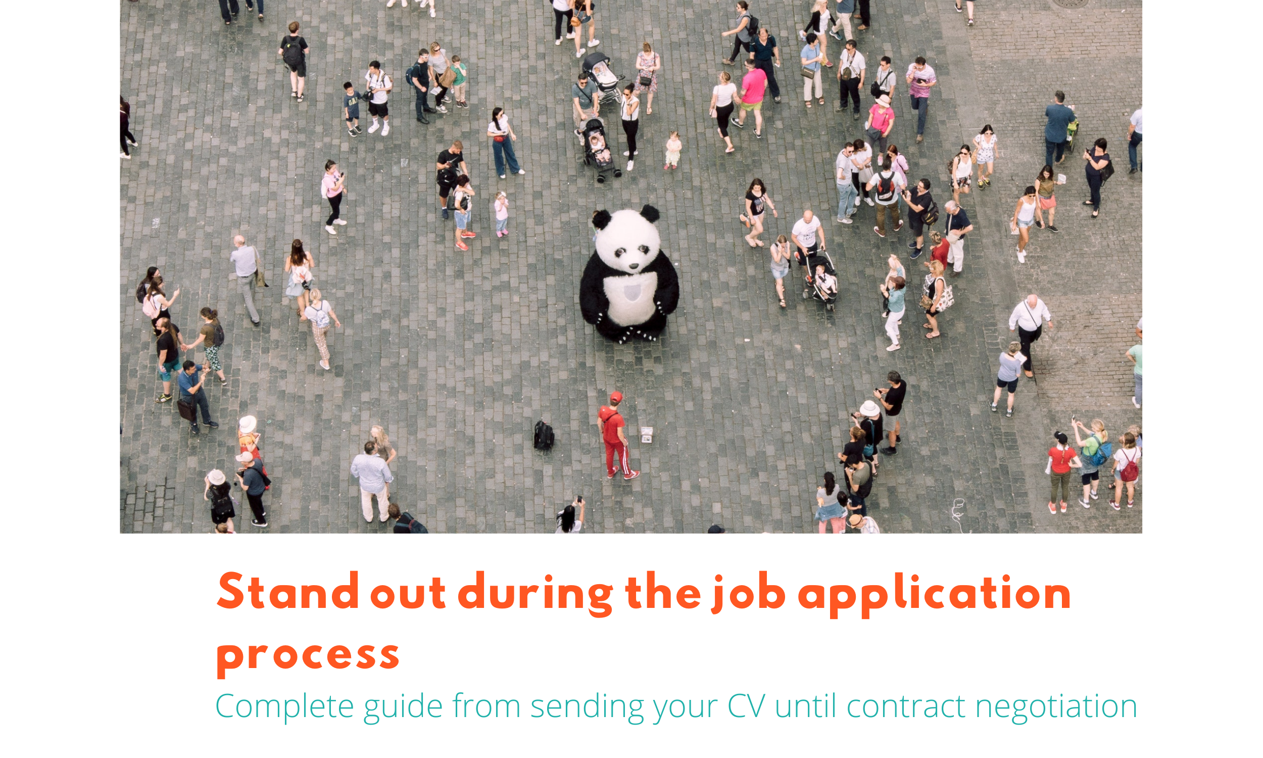 Stand out during the job application process