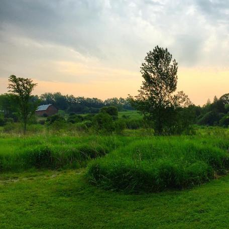 Winslow Farm by Ryan Hollyman.jpg