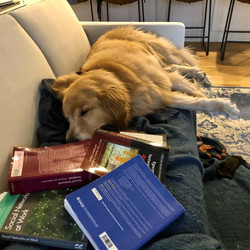 Rory surrounded by network books
