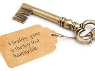 Healthy Spine, Healthy Life