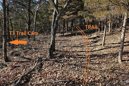 olymbros-t3-off-trail-diagram_orig.jpg