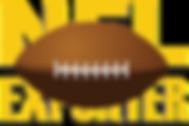 NFLExporter logo 2019.png