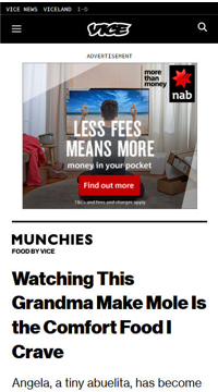 vice2.png