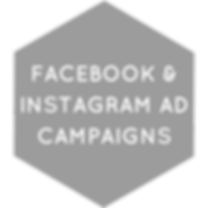 Facebook & Instagram Ad Campaigns