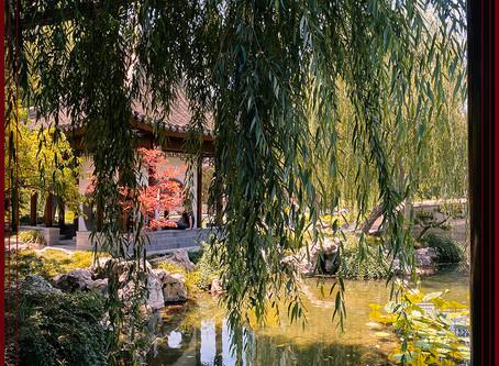 The Huntington Gardens