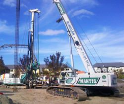 CFA piling and reinforcement cage