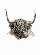 Animal prints for sale