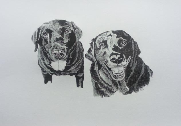 Bertie and Ellie