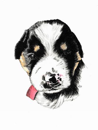 Pepper pup