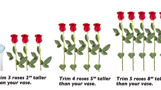 How to arrange the perfect roses!