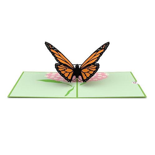 Love Pop - Butterfly Card