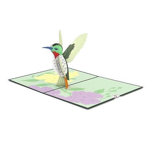 Love Pop - Hummingbird Card