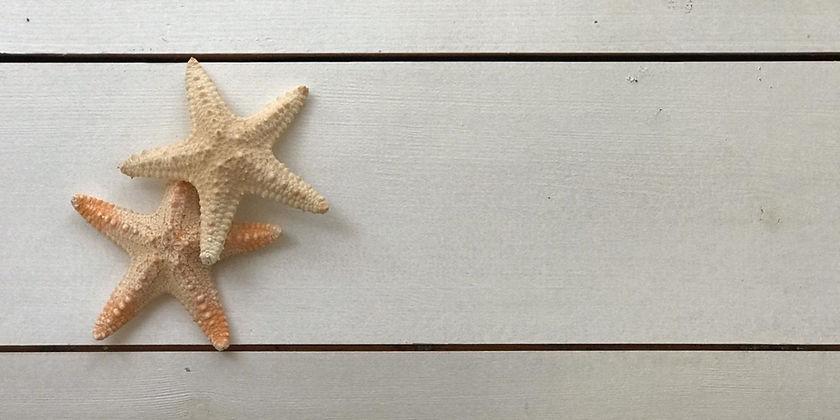 כוכבי ים על מוצר לבית