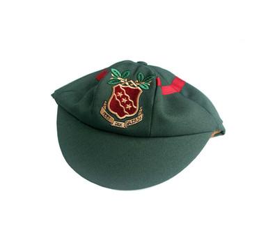 school cap.jpg