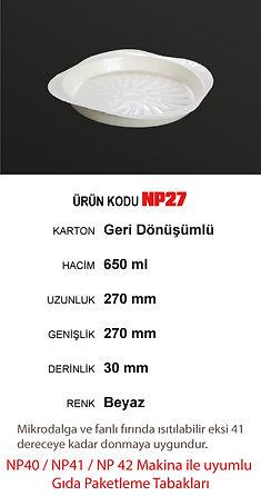 NP27.jpg