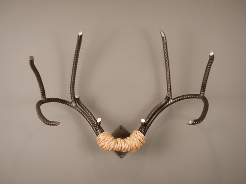 "Whitetail Rack 20"" wide, life size"